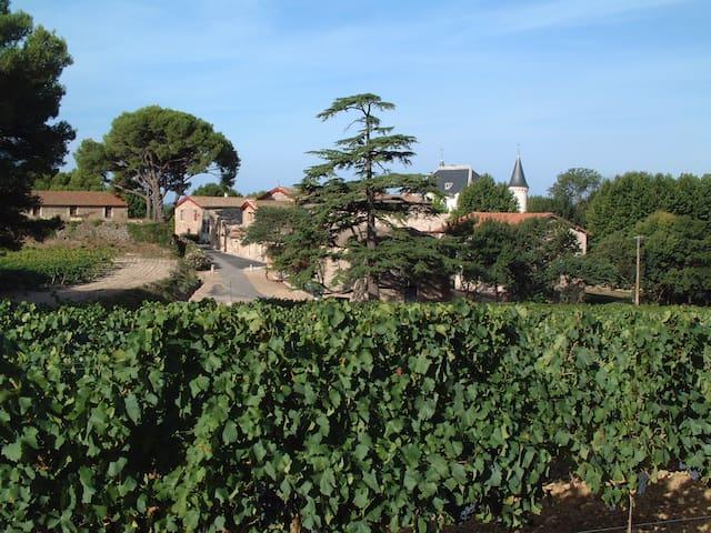 Gîte au coeur des vignes - Pézenas - Apartemen