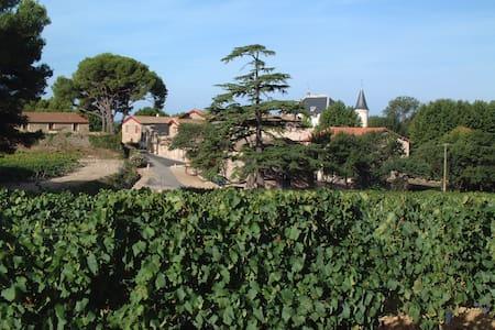 Gîte au coeur des vignes - Pézenas