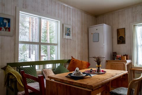 Rustic House in Lapland arctict circle kennel.