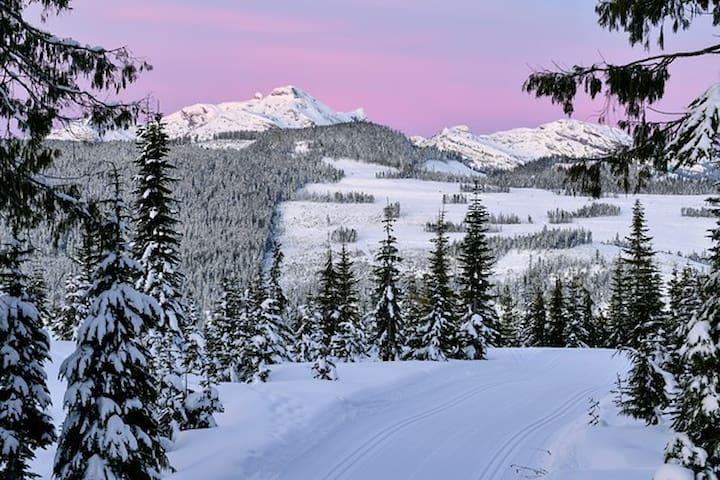 ★Cozy Cottage★Close to Mt Washington