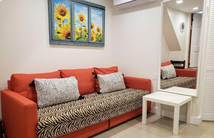 Queens Size Sofa Bed in The Studio space. Quiet air Condition, Floor Heating , Full body Mirror