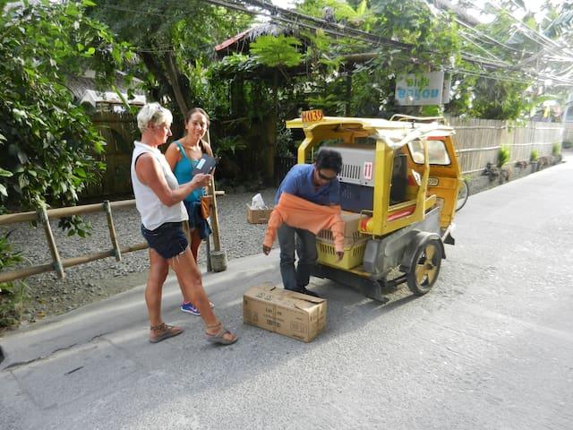 Help rescuing animals like in nearby Boracay Island