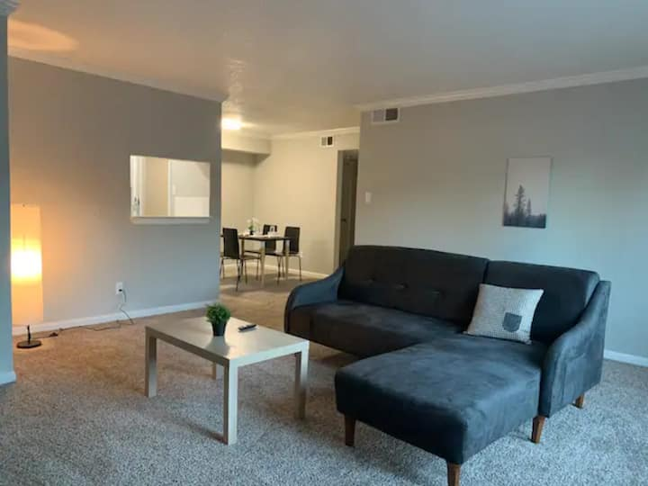 Spacious King Bd1Bth in Center of Houston