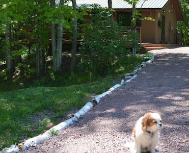 Hauser's Bayfield Cabin - Bayfield - Chalet