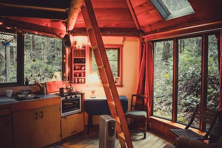 Rustic cabin in the woods - Galiano Island - Blockhütte