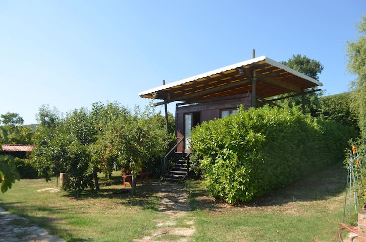 Cabin in an orchard