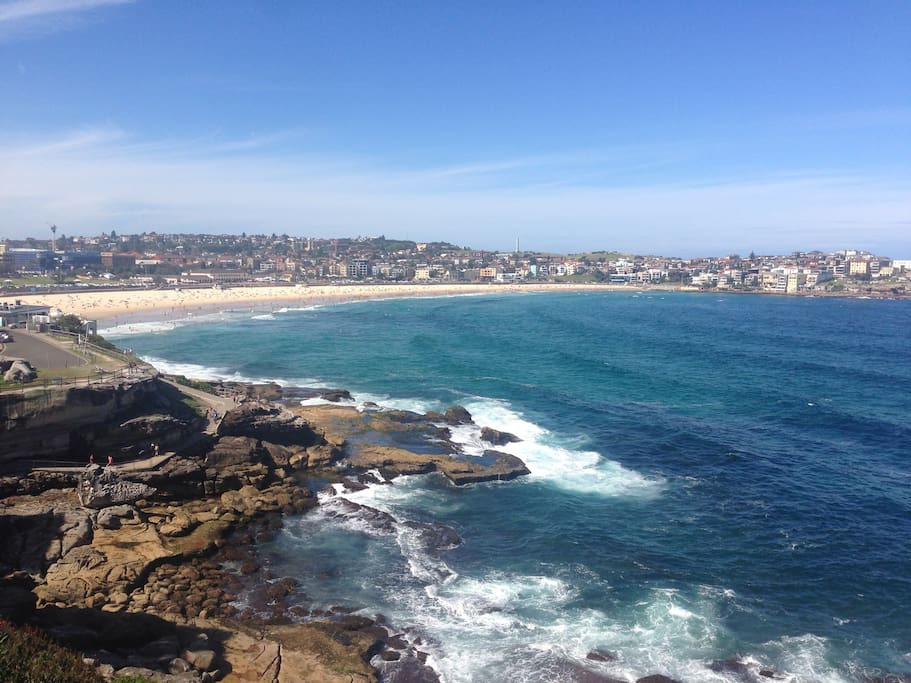 Amazing view from the terrace over Bondi
