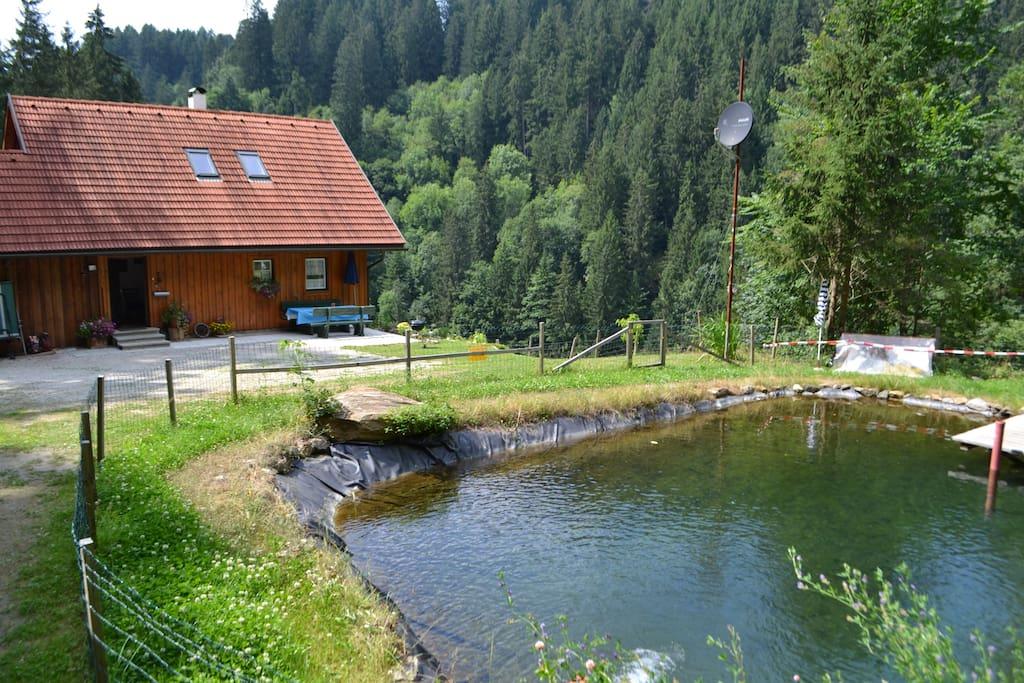 Fischteich hinter dem Haus. Grillplatz ebenfalls vorhanden.