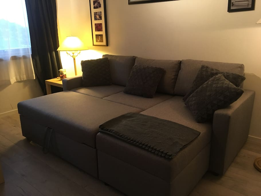 An easy pull-out sofabed with room for two people.