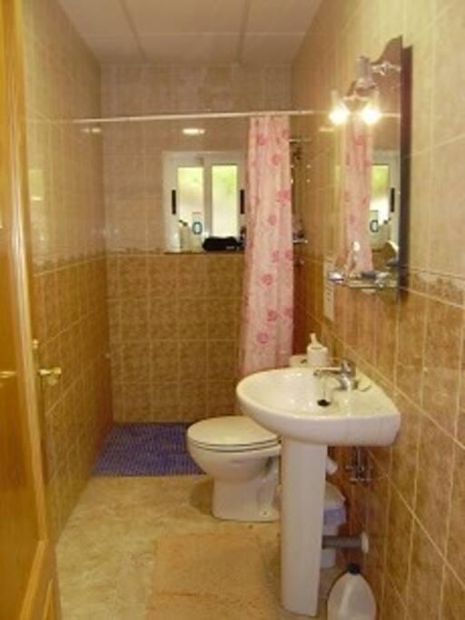 walk in shower easy access