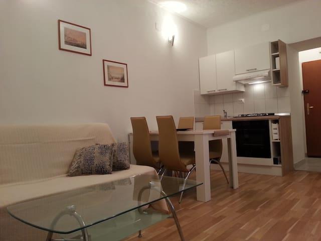 Apartment in the center of Rijeka. - Rijeka - Wohnung