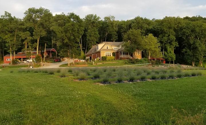 TN Lavender Farm-40 min. S of Nashville- Guest Apt