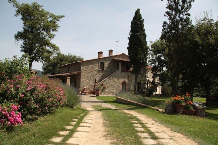 Agridomus IL COLCELLO - Arezzo - Wohnung