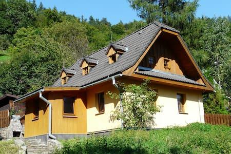 entre la ville et la forêt - Banská Štiavnica - Hus