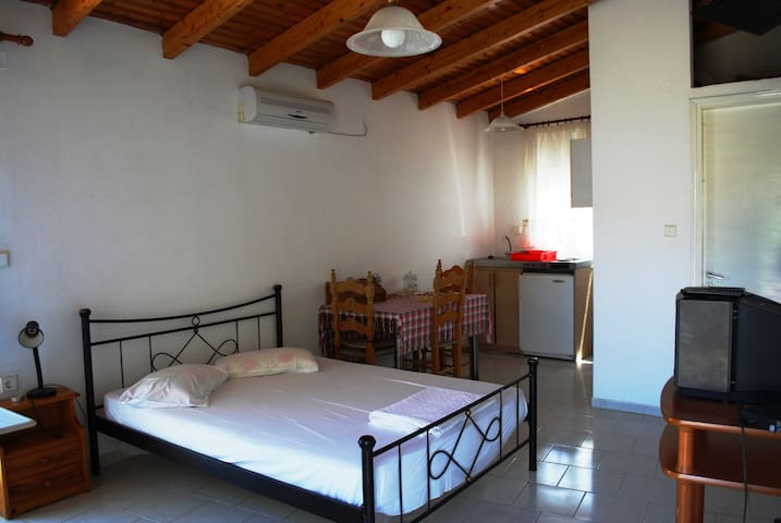 Holiday Studio in Gaios - Sea View  - Gaios - Apartment