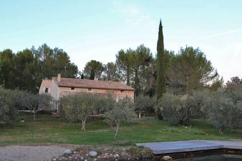 terrain d oliviers, clos, parking