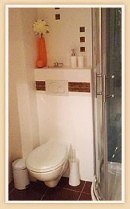 Une salle de bain avec douche