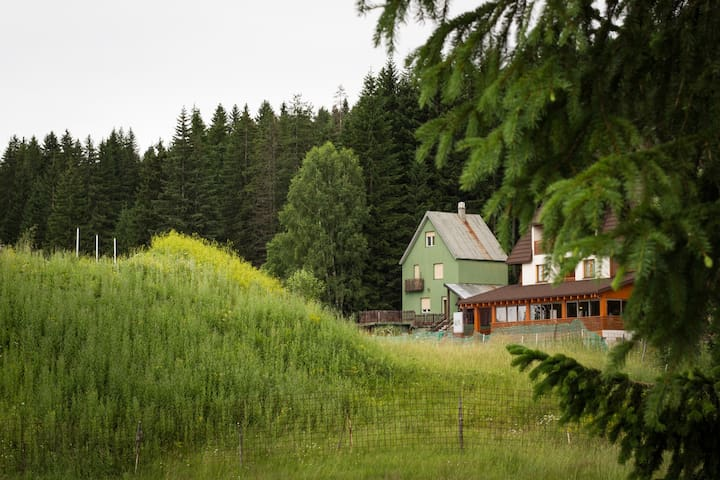 Mountain paradise! - Žabljak - Casa