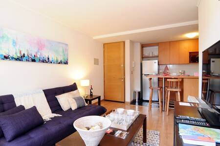 Cozy apartment in the heart of Stgo