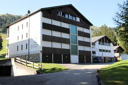 Comfortable top roof appartment - Giswil