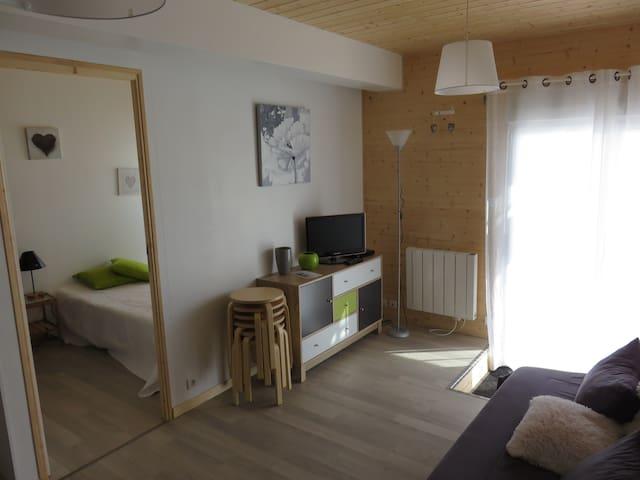 Appartement avec terrasse, à la montagne, au calme - Longchaumois - Daire