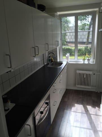 2 værelses lejlighed m køkken/bad - Nørresundby - Lägenhet
