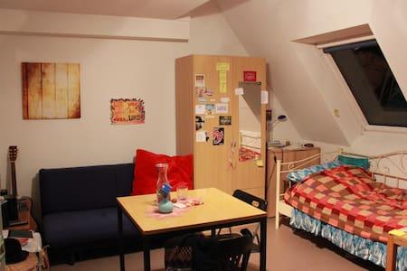 Helles, schönes Zimmer Groß-Zimmern - Groß-Zimmern