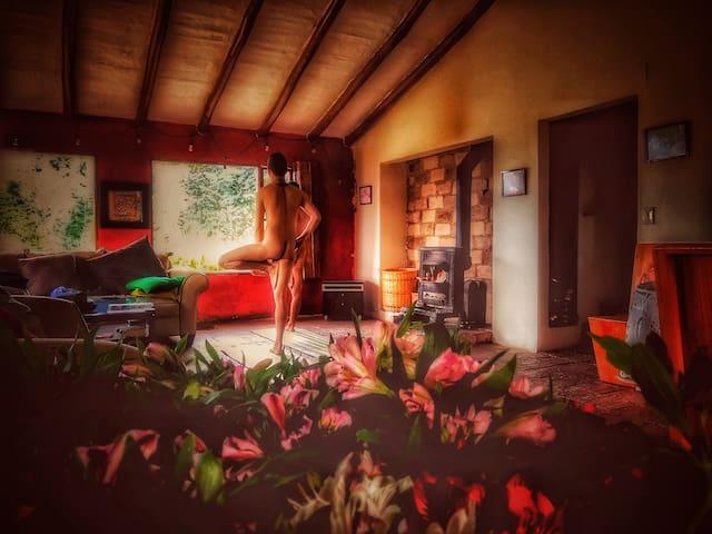 The Naked House - Nemocón