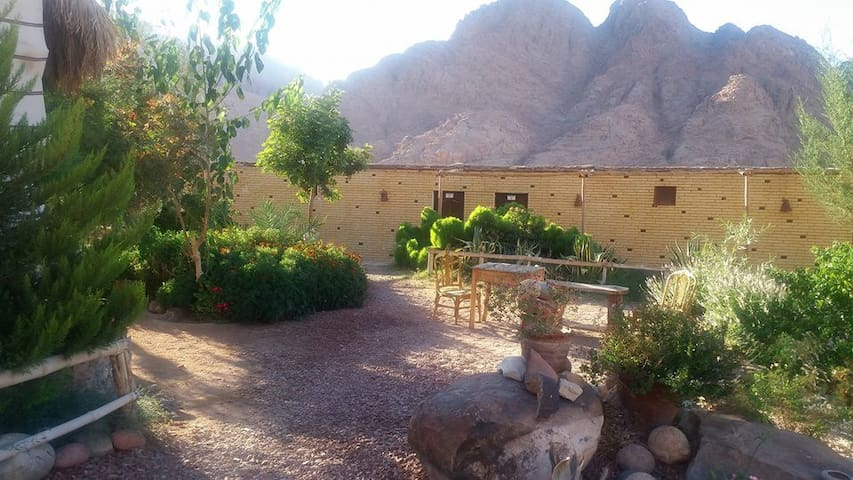 Masoudi Lodge - Saint Catherine - Bed & Breakfast