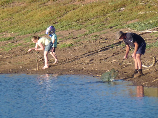 What about a bit of yabbying with the family - nets & lessons provided