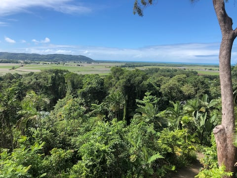 Rainforest retreat with Coral Sea view