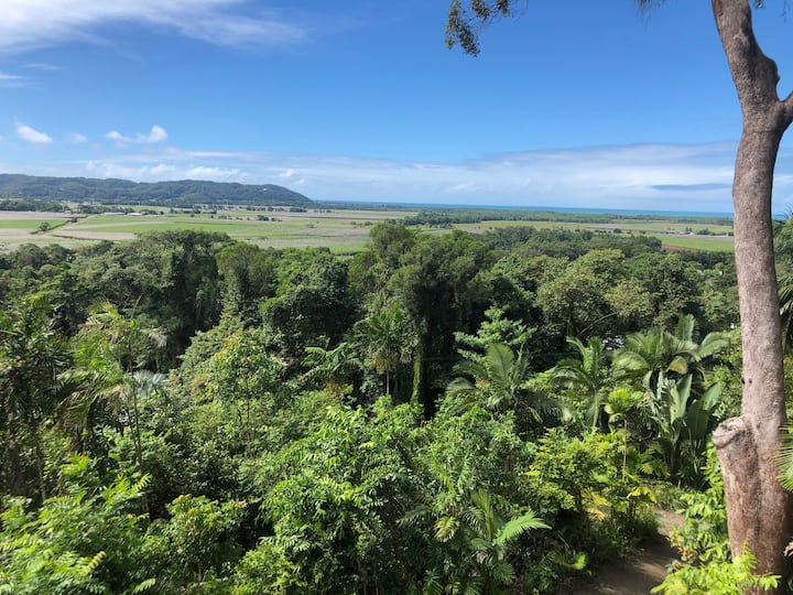 Guest studio in Rainforest with Coral Sea view