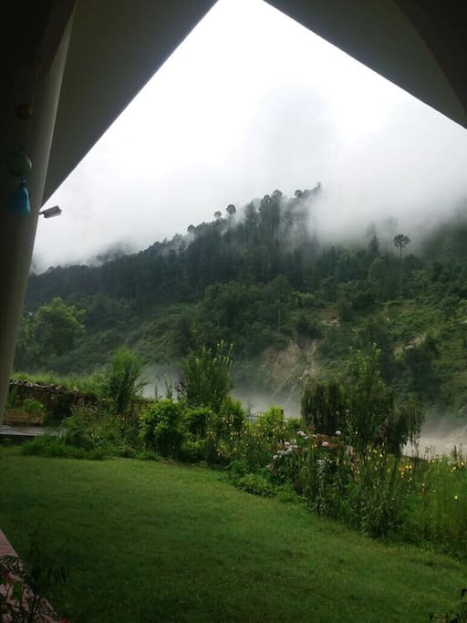 Spring and summer bring a lush green colour to every thing at Anand Ganga
