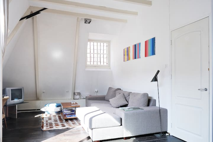 Bright top floor apartment - Amsterdam - Pis
