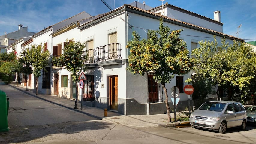 Alquiler en Prado del Rey. Sierra de Cádiz.