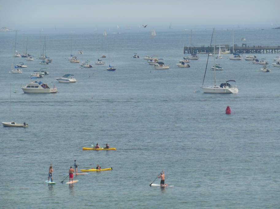 Kayaks, paddleboards and lessons available at the beach.