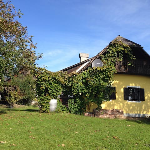 charming wineyard chalet  - Gauitsch 13 - House