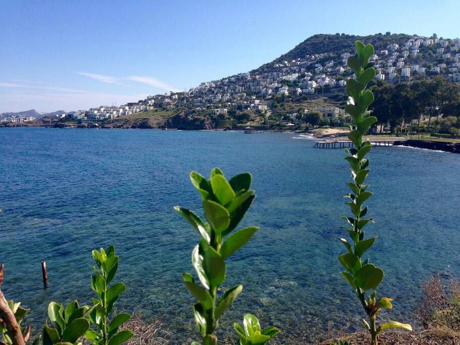 Seaside - 5 min. by walking distance