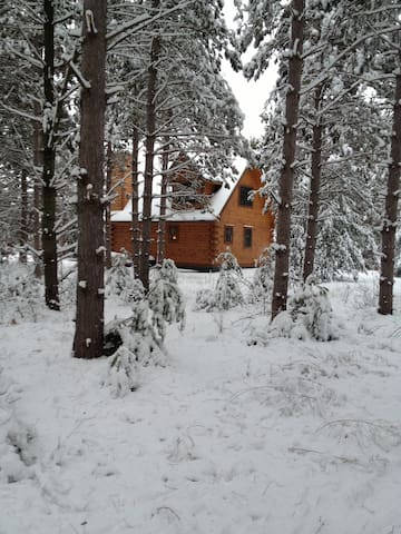 Beautiful log cabin in the woods! - Wautoma - Casa