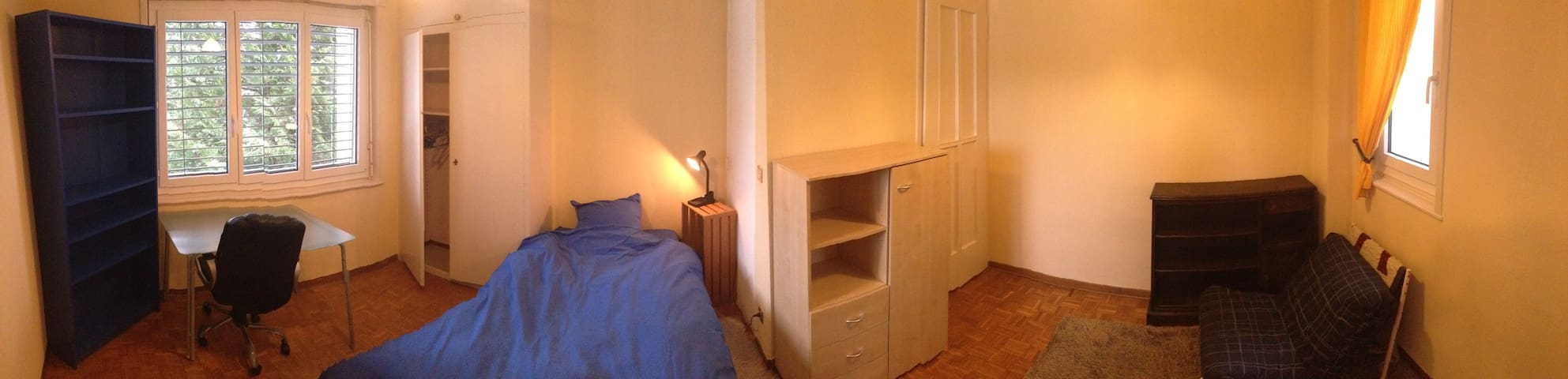 Room Rental in Big Apt. Downtown Lausanne1 - Morges - Appartement