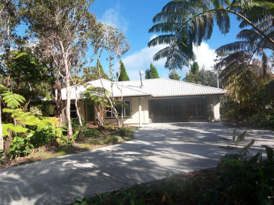The driveway fronting the house has ohia trees and hapu'u ferns on both sides