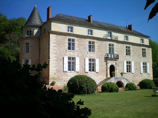 Magnificent castle in the Dordogne