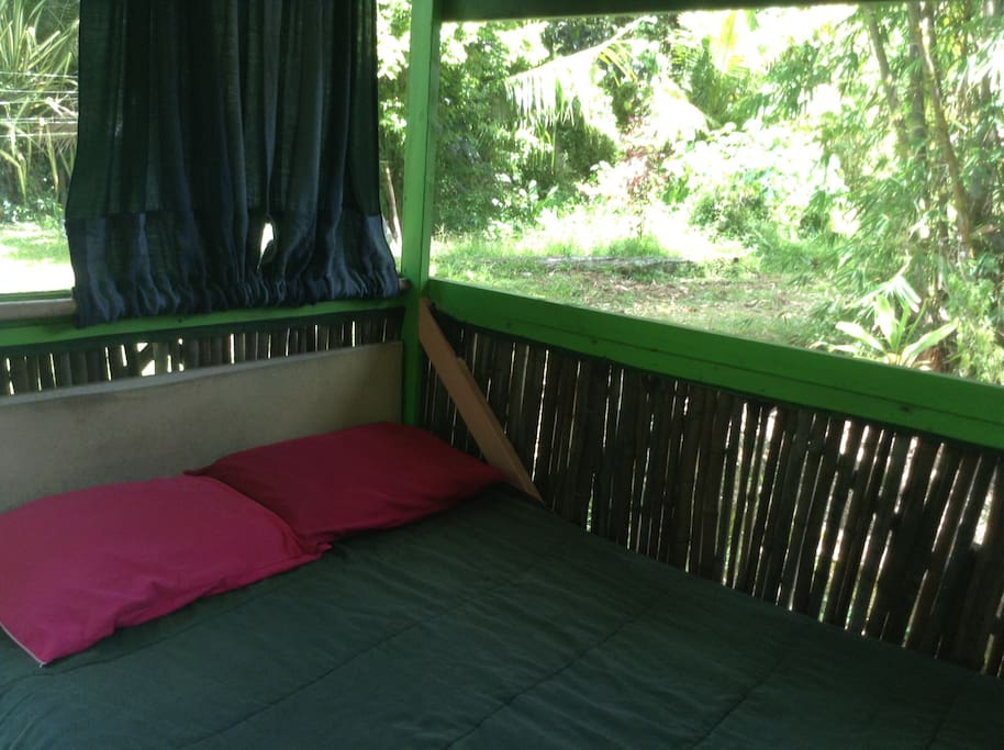 Soothing lush view from the Bamboo Hut!