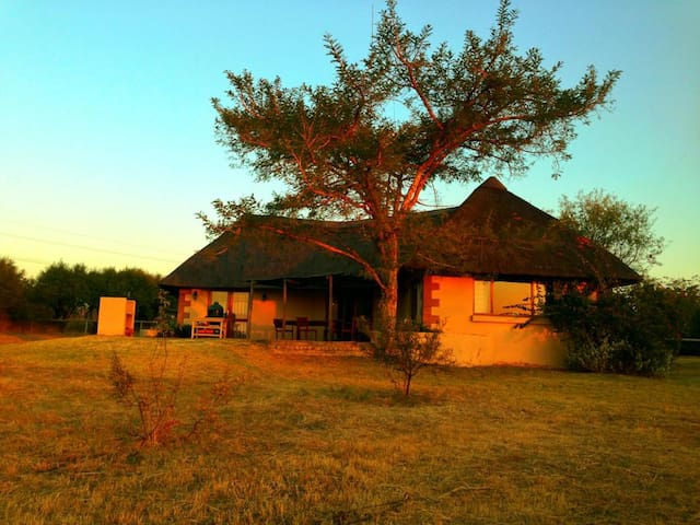 Tranquil Country Cottage  - Midrand - House