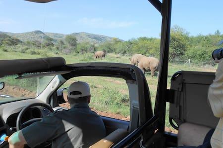 Morokolo Family Suite - Pilanesberg National Park