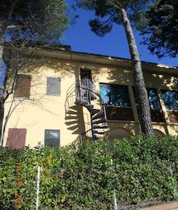 Mansarda all'interno casa campagna - Monteciccardo