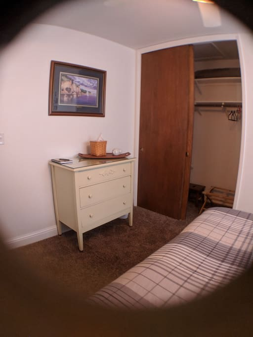 Dresser and ample closet space for you