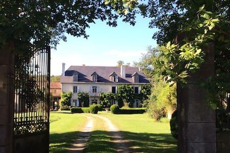 Beautiful Old French Chateau - Vidouze