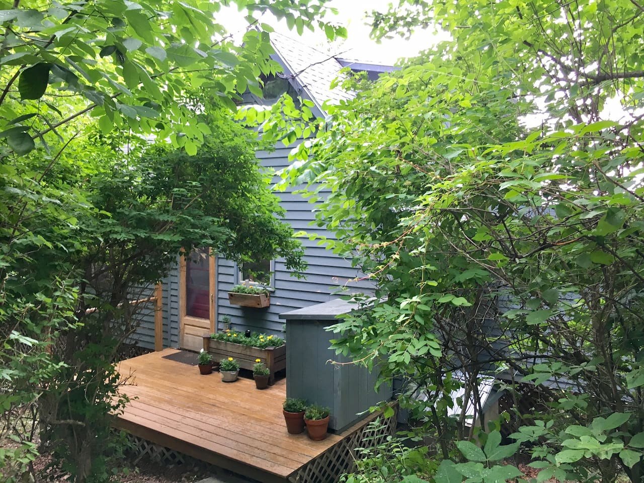 My 2BR cottage is tucked away behind the trees, but the opposite side of it, perched high on a hill, looks miles over the treetops to the Catskills!