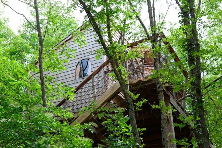 Fisherman's Tree House, charm & Spa